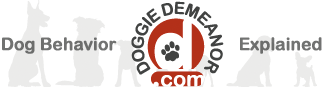 DoggieDemeanor.com - Dog Behavior Explained