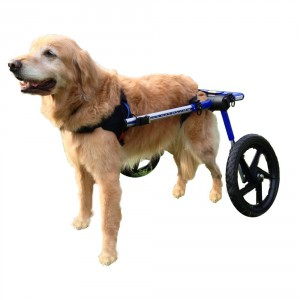 Dog wheels for paralyzed dogs