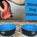 slime-on-dog-dishes