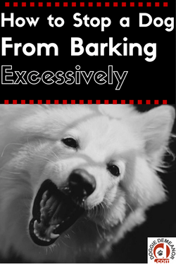 Stopping a dog from barking excessively